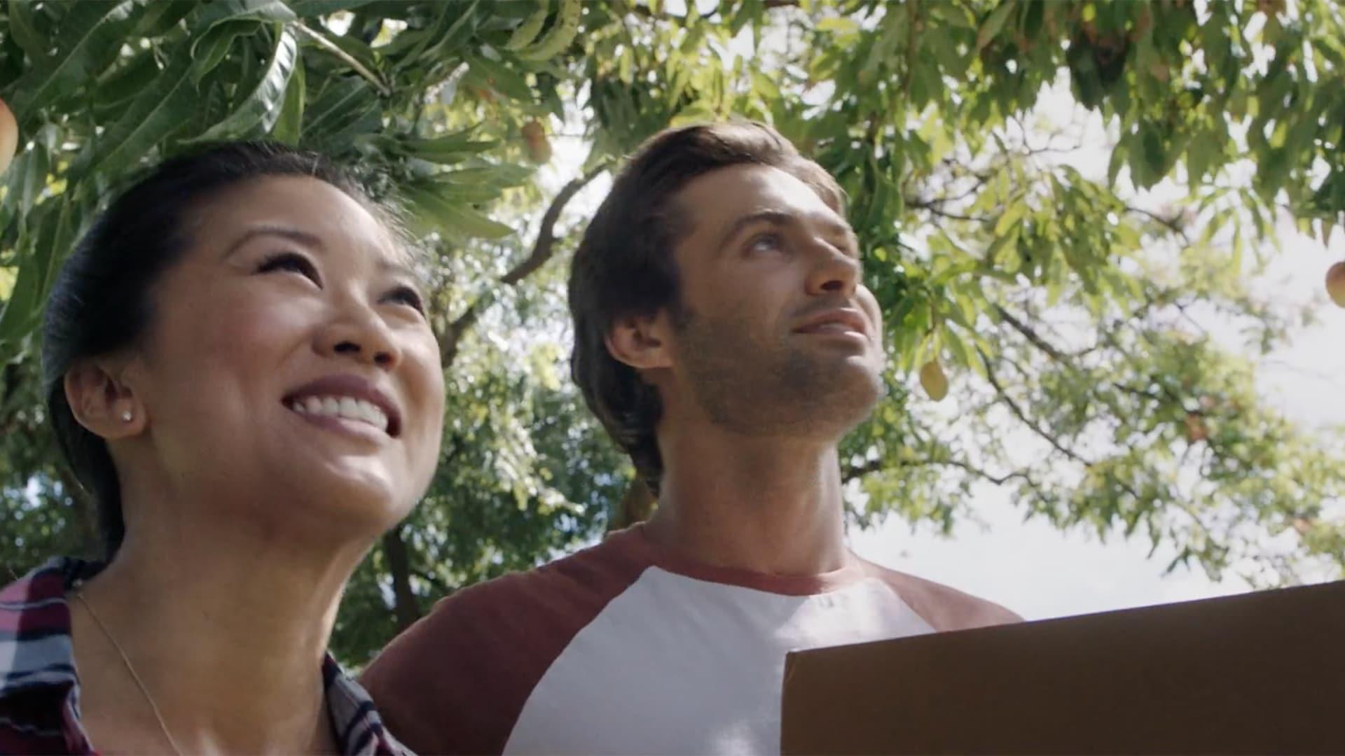 First Insurance Company of Hawaii: FirstSelect Portfolio Homeowners, Mango Tree