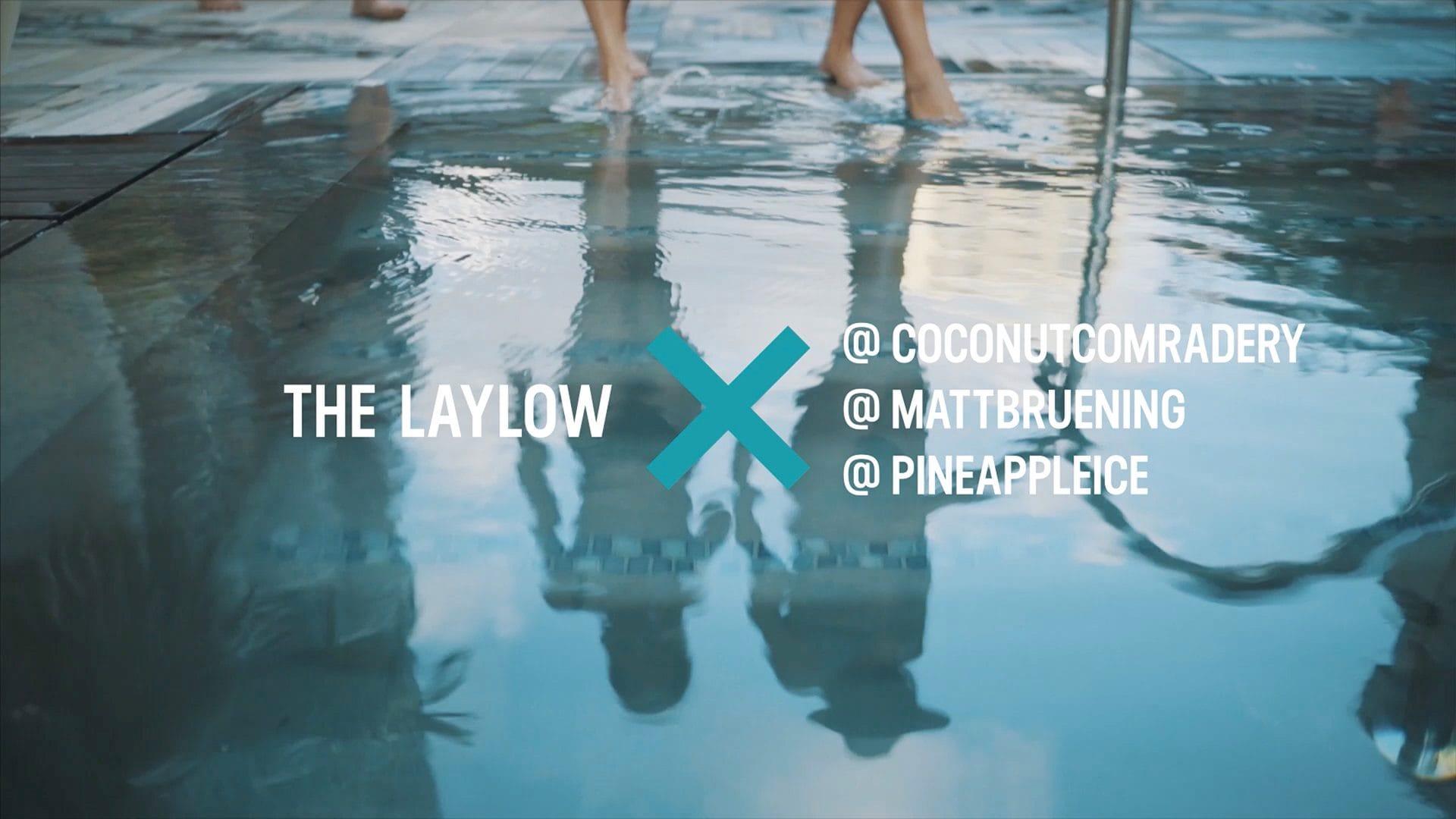 The Laylow x pineappleice, mattbruening, & coconutcomradery