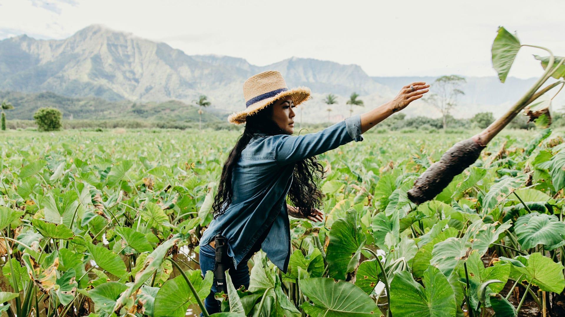 Seeds of Perseverance - Lyndsey Haraguchi-Nakayama, Kauai (for mvnp website use only)  Share Seeds of Perseverance - Lyndsey Haraguchi-Nakayama, Kauai