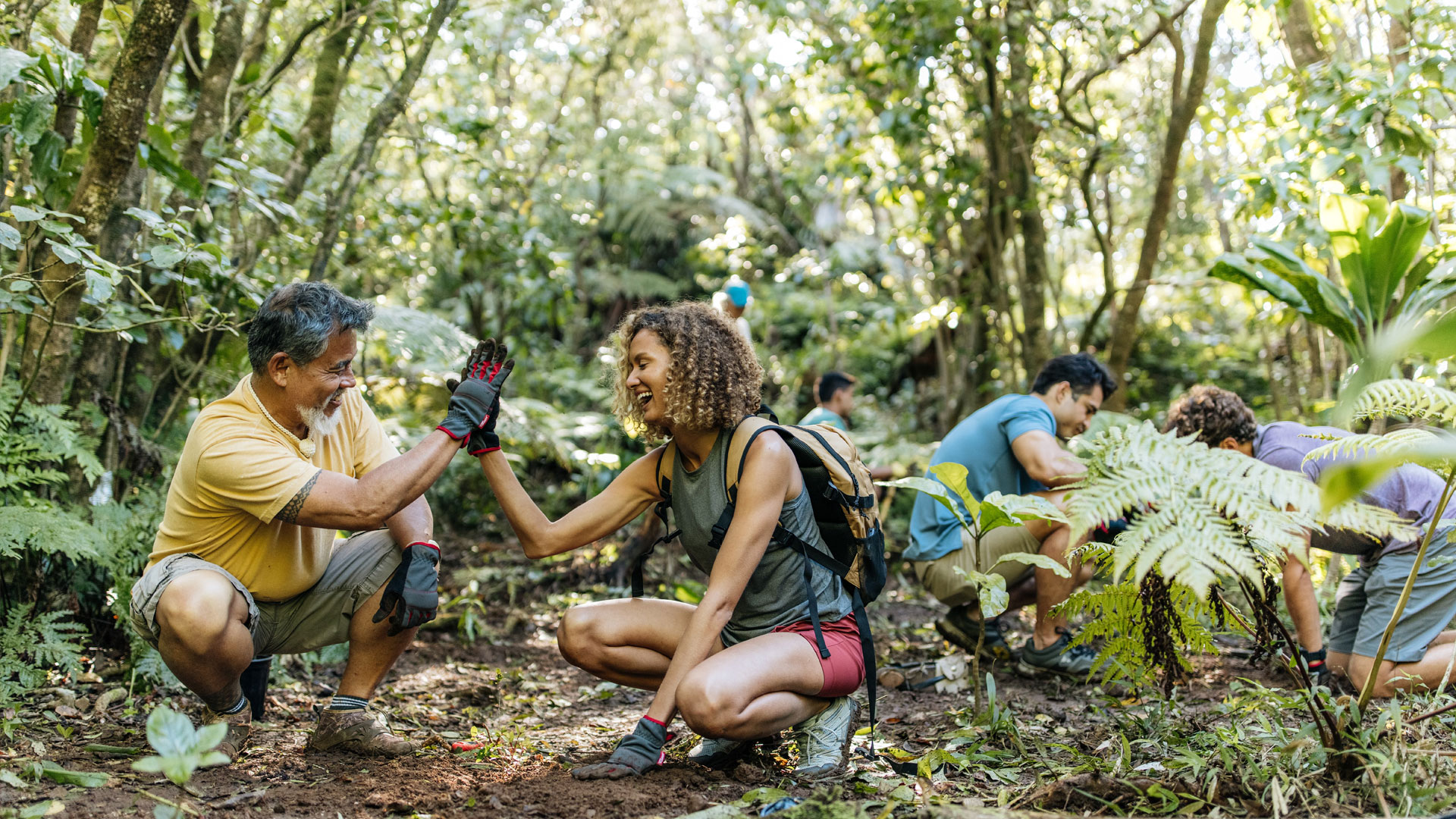 HVCB Reforestation Malama Hawaii